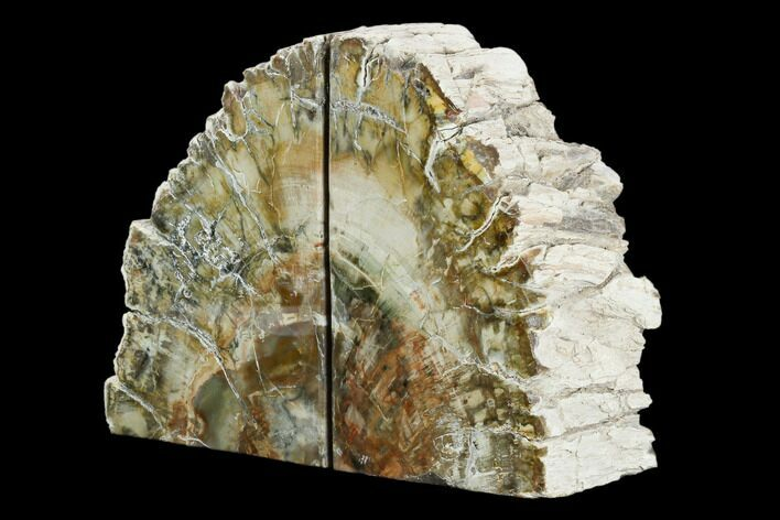 "5.9"" Tall, Colorful Petrified Wood Bookends - Madagascar"
