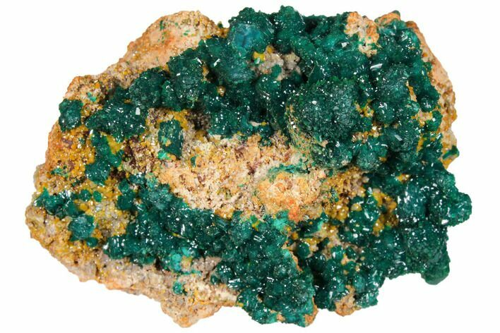 "3.1"" Gemmy Dioptase and Mimetite on Dolomite - Ntola Mine, Congo"