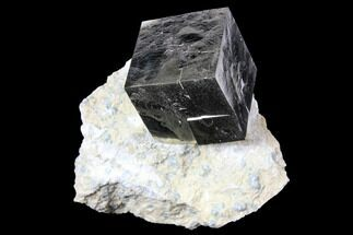 ".97"" Shiny, Natural Pyrite Cube In Rock - Navajun, Spain For Sale, #131114"