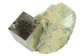 Pyrite - Fossils For Sale - #131148