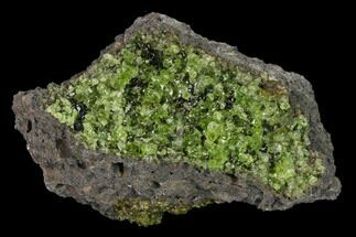 "Buy 3.3"" Peridot in Basalt - Arizona - #132298"