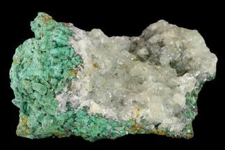 Malachite & Calcite - Fossils For Sale - #132729