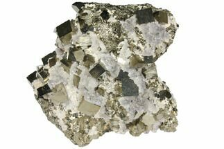 Pyrite & Calcite - Fossils For Sale - #133017