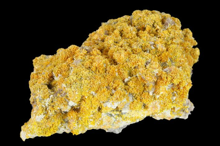"3.6"" Orpiment with Barite Crystals - Peru"