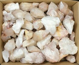 "Wholesale: 2"" to 4.3"" Pineapple (Milky) Quartz Points - 105 pieces For Sale, #133892"