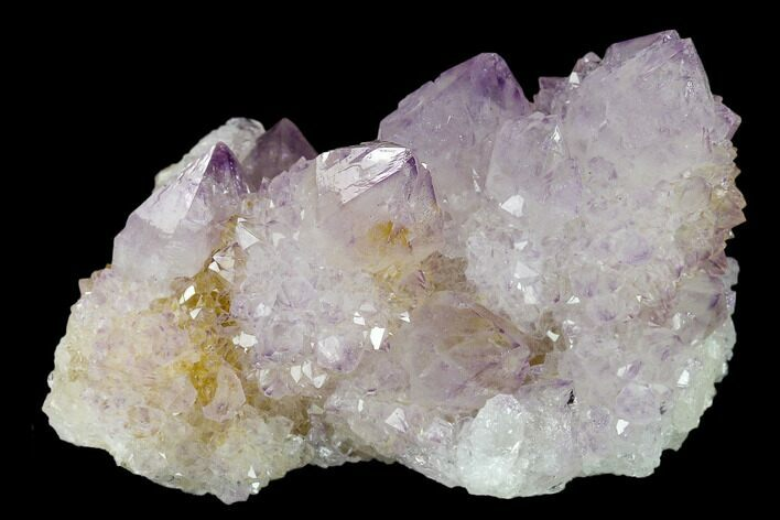 "2.6"" Cactus Quartz (Amethyst) Crystal Cluster - South Africa"