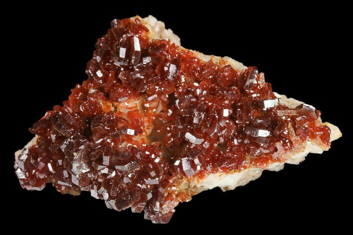 "1.8"" Ruby Red Vanadinite Crystals on Barite - Morocco"