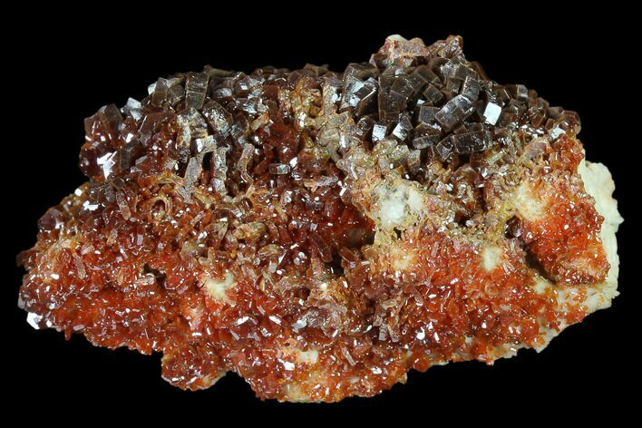 "2.6"" Ruby Red Vanadinite Crystals on Barite - Morocco"