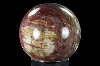 "6.1"" Colorful, Petrified Wood Sphere - Madagascar For Sale, #135326"