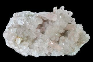 "10.1"" Wide Quartz Crystal Cluster - Brazil For Sale, #136160"