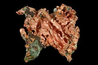 Copper - Fossils For Sale - #136689