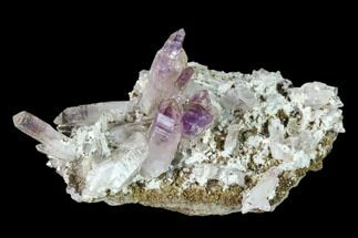 "2.8"" Amethyst Crystal Cluster - Las Vigas, Mexico For Sale, #136997"