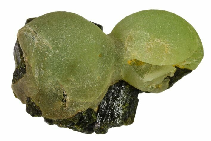 "1.9"" Botryoidal Prehnite and Epidote Association - Mali, Africa"