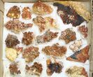 "Lot: 1.5 to 3"" Bladed Barite With Vanadinite - 36 Pieces - #138115-2"