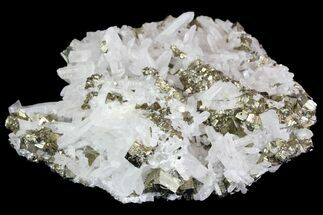 "Buy 4"" Quartz and Cubic Pyrite Association - Peru - #138154"