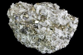 "Buy 5.3"" Galena, Chalcopyrite, Quartz and Pyrite Association - Peru - #138163"