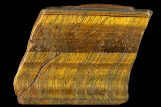 "2.2"" Polished Tiger's Eye Slab - South Africa For Sale, #140513"