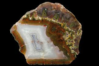 Chalcedony var. Agate - Fossils For Sale - #141273