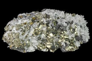 Pyrite, Sphalerite & Quartz - Fossils For Sale - #141846