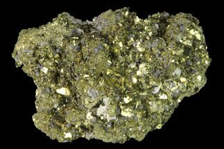 "1.9"" Chalcopyrite and Cubic Pyrite Association - Peru For Sale, #141833"