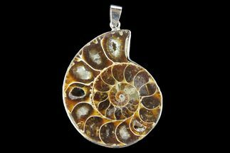 "1.7"" Fossil Ammonite Pendant - 110 Million Years Old For Sale, #142898"