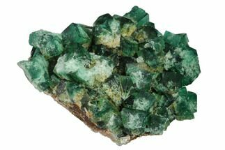 Fluorite  - Fossils For Sale - #143061