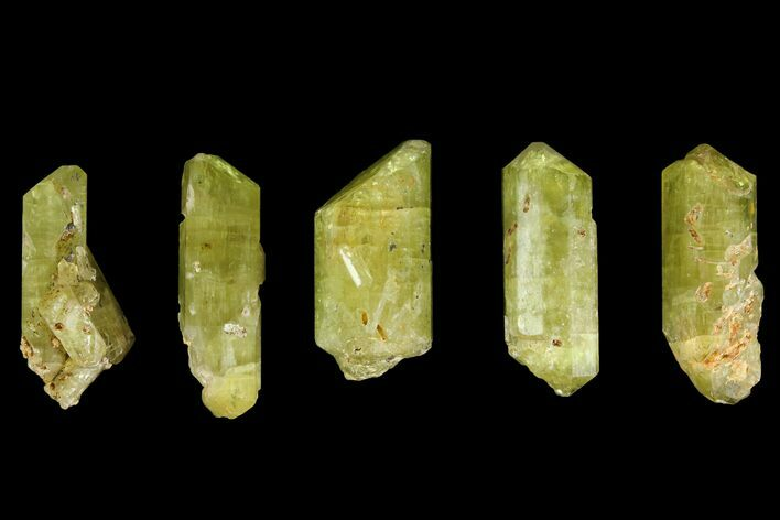 "Five Yellow Apatite Crystals (Over 1.4"") - Morocco"