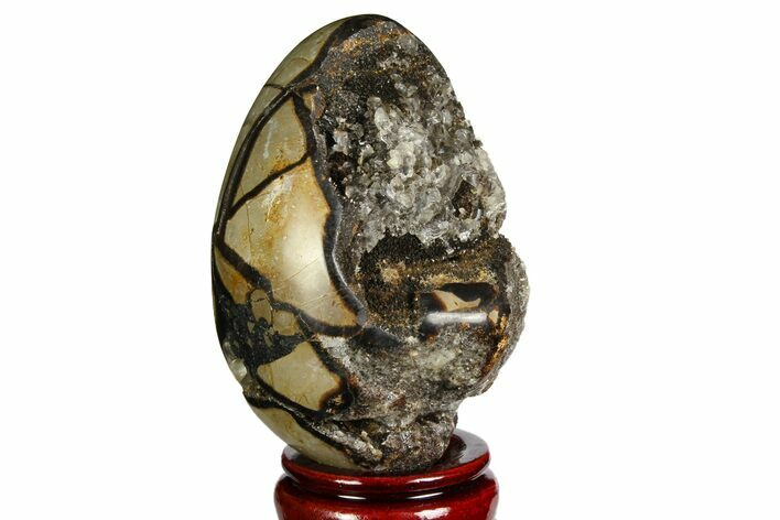 "4.25"" Septarian ""Dragon Egg"" Geode - Barite Crystals"
