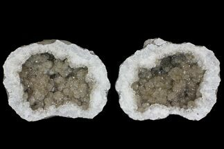"12"" Smoky Keokuk Geode with Calcite & Filiform Pyrite - Missouri For Sale, #144812"