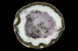 "5"" Las Choyas ""Coconut"" Geode Half with Amethyst & Agate - Mexico For Sale, #145868"