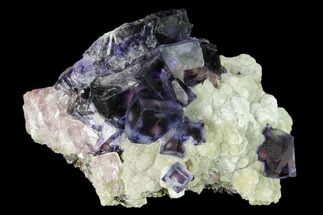 "2.5"" Purple-Blue Cubic Fluorite Crystals - Inner Mongolia For Sale, #146942"