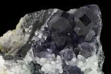 "3.7"" Cuboctahedral Fluorite Crystals with Pyrite on Quartz - China - #147052-2"