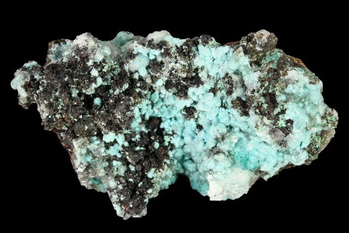 "1.7"" Aurichalcite and Calcite Association - Utah"