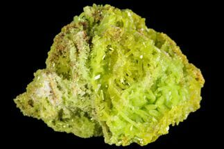 Pyromorphite - Fossils For Sale - #147654