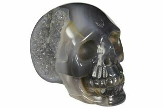 "Buy 3.1"" Polished Agate Skull with Quartz Crystal Pocket  - #148087"
