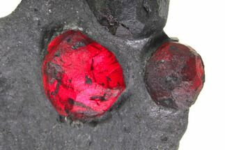 "Buy 1.8"" Plate of Five Red Embers Garnets in Graphite - Massachusetts - #148147"