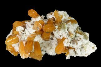 "Buy 1.2"" Orange Stilbite and Calcite Association - Strzegom, Poland - #148393"