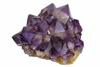 "Buy Beautiful, 7.1"" Purple Amethyst Crystal Cluster - Congo - #148702"