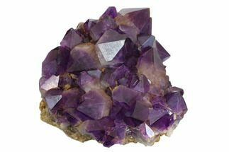 "Buy 8.2"" Deep Purple Amethyst Crystal Cluster - Congo - #148705"