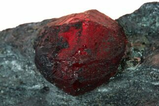 "Buy .3"" Red Embers Garnet in Graphite - Massachusetts - #147880"
