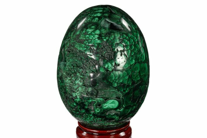 "Stunning, 4.6"" Polished Malachite Egg - Congo"