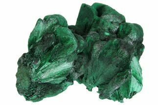 "2.3"" Silky Fibrous Malachite Cluster - Congo For Sale, #150455"