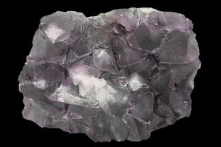 "Buy 3.3"" Purple-Green Octahedral Fluorite Crystal Cluster - Fluorescent! - #149665"