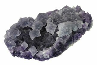"Buy 4.9"" Lilac Fluorite Over Purple Octahedral Fluorite - Fluorescent! - #149683"