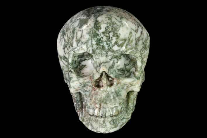 "4.9"" Realistic, Polished Tree Agate Skull"