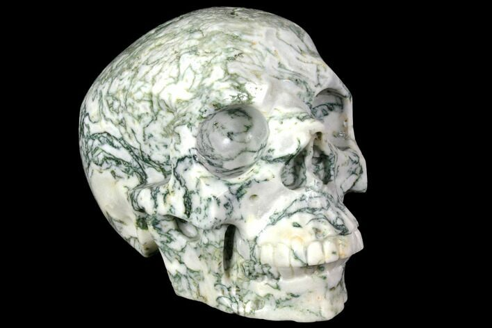 "5.8"" Realistic, Polished Tree Agate Skull"