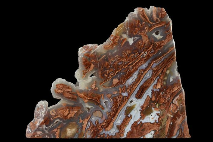 "5.4"" Polished Wyoming Youngite Agate/Jasper Slab - Fluorescent"