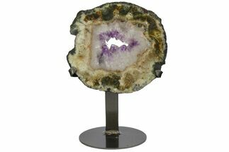 Quartz var. Amethyst  - Fossils For Sale - #151194