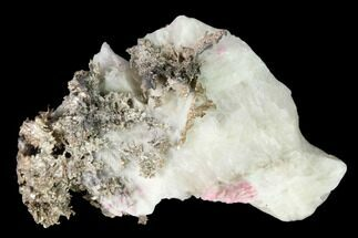 Silver (Ag) & Calcite - Fossils For Sale - #152595