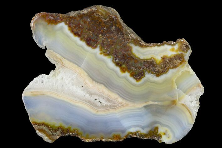 "4"" Polished Calandria Agate Section - Mexico"